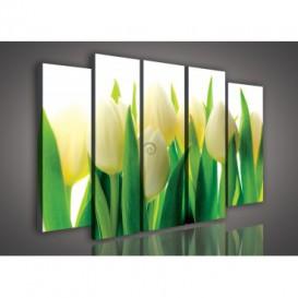 Obraz na plátne viacdielny - OB2910 - Žlto biele tulipány