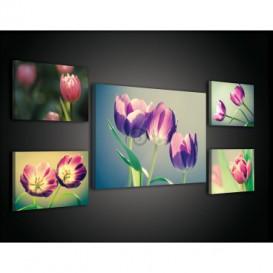 Obraz na plátne viacdielny - OB2944 - Tulipány