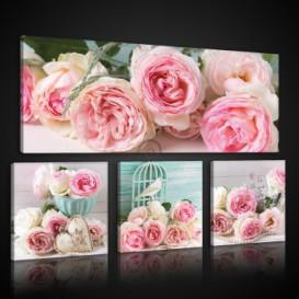 Obraz na plátne viacdielny - OB2967 - Ruže vintage