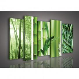 Obraz na plátne viacdielny - OB3007 - Bambus