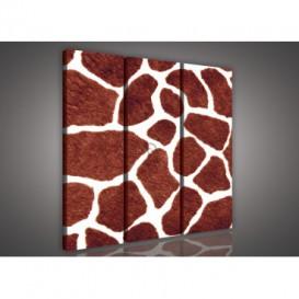 Obraz na plátne viacdielny - OB3062 - Žirafia koža