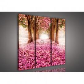Obraz na plátne viacdielny - OB3077 - Ružový les
