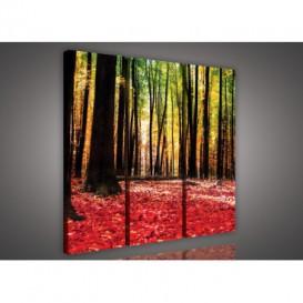 Obraz na plátne viacdielny - OB3083 - Ružový les