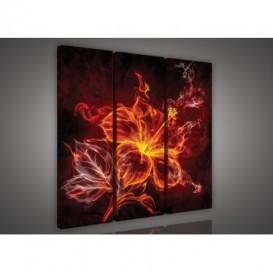 Obraz na plátne viacdielny - OB3091 - Abstraktný kvet