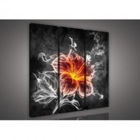 Obraz na plátne viacdielny - OB3092 - Abstraktný kvet