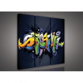 Obraz na plátne viacdielny - OB3110 - Grafit
