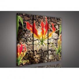 Obraz na plátne viacdielny - OB3113 - Červený kvet