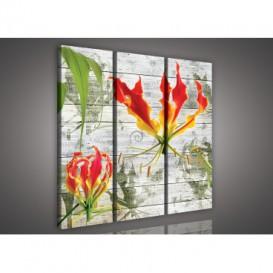 Obraz na plátne viacdielny - OB3117 - Červený kvet