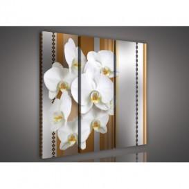 Obraz na plátne viacdielny - OB3141 - Biela orchidea hnedý vzor