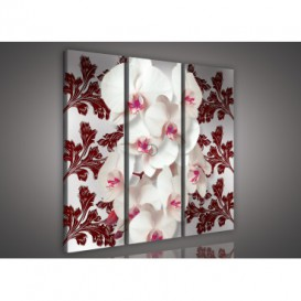 Obraz na plátne viacdielny - OB3143 - Biela orchidea červený vzor