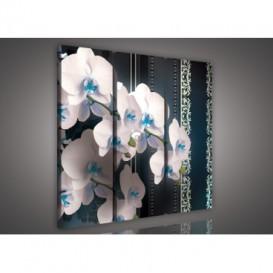 Obraz na plátne viacdielny - OB3152 - Biela orchidea modrý vzor