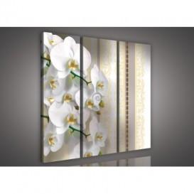 Obraz na plátne viacdielny - OB3158 - Biela orchidea žltý vzor