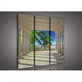 Obraz na plátne viacdielny - OB3174 - Výhľad na palmy