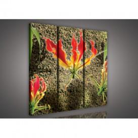 Obraz na plátne viacdielny - OB3185 - Abstraktný kvet