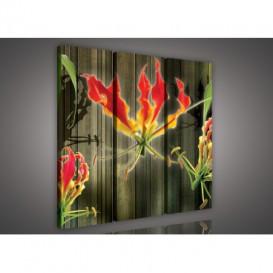 Obraz na plátne viacdielny - OB3186 - Abstraktný kvet