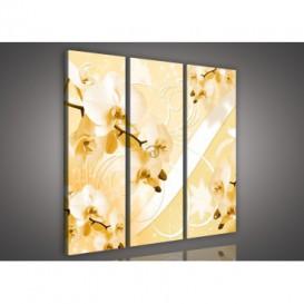Obraz na plátne viacdielny - OB3188 - Zlatá orchidea