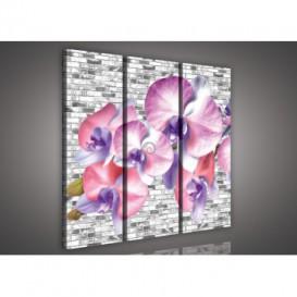 Obraz na plátne viacdielny - OB3221 - Abstraktná orchidea