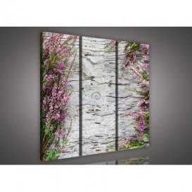 Obraz na plátne viacdielny - OB3226 - Ružové kvety