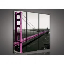 Obraz na plátne viacdielny - OB3264 - Fialový most