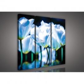 Obraz na plátne viacdielny - OB3281 - Modré kvety