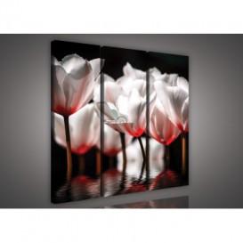 Obraz na plátne viacdielny - OB3282 - Červené kvety