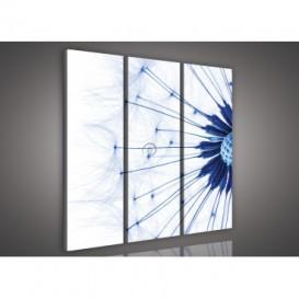 Obraz na plátne viacdielny - OB3289 - Púpava modrá