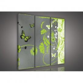 Obraz na plátne viacdielny - OB3299 - Kvety a motýle zelený