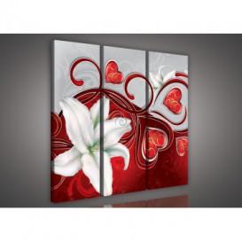 Obraz na plátne viacdielny - OB3302 - Biely kvet červený
