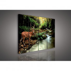 Obraz na plátne viacdielny - OB3314 - Jeleň v lese