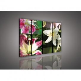 Obraz na plátne viacdielny - OB3346 - Mozaika kvetov