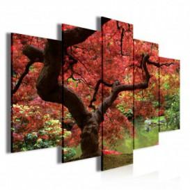 Obraz na plátne viacdielny - OB3398 - Jesenný les