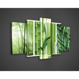 Obraz na plátne viacdielny - OB3410 - Bambus