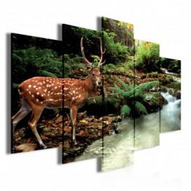 Obraz na plátne viacdielny - OB3419 - Jeleň v lese