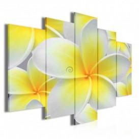 Obraz na plátne viacdielny - OB3420 - Žltobiely kvet