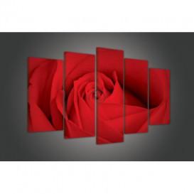 Obraz na plátne viacdielny - OB3437 - Červená ruža