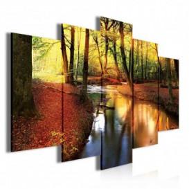 Obraz na plátne viacdielny - OB3497 - Potok v jesennom lese