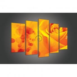 Obraz na plátne viacdielny - OB3516 - Oranžová ruža