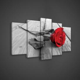 Obraz na plátne viacdielny - OB3606 - Ruža