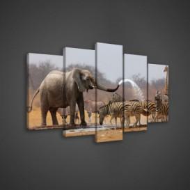 Obraz na plátne viacdielny - OB3633 - Slon a zebry