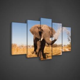 Obraz na plátne viacdielny - OB3636 - Slon