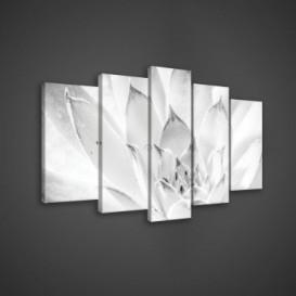 Obraz na plátne viacdielny - OB3649 - Biely kvet