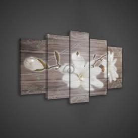 Obraz na plátne viacdielny - OB3658 - Biely kvet
