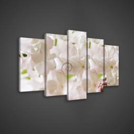Obraz na plátne viacdielny - OB3662 - Biele kvety