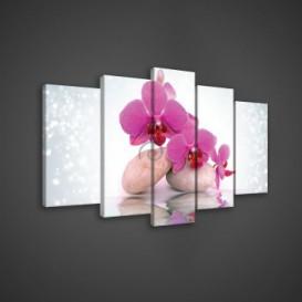 Obraz na plátne viacdielny - OB3685 - Ružový kvet s kamienkami