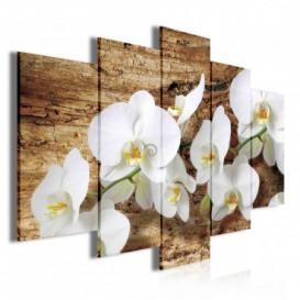 Obraz na plátne viacdielny - OB3702 - Biele kvety