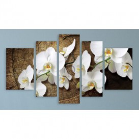 Obraz na plátne viacdielny - OB3704 - Biele kvety