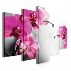 Obraz na plátne viacdielny - OB3708 - Ružové kvety