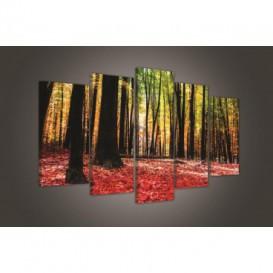 Obraz na plátne viacdielny - OB3714 - Ružový les