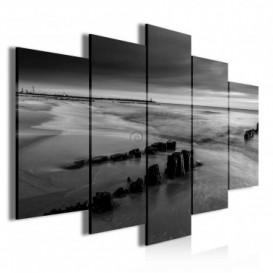 Obraz na plátne viacdielny - OB3754 - Čierno biele pobrežie