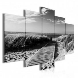 Obraz na plátne viacdielny - OB3756 - Chodník na pláž